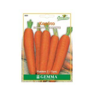 Καρότο γίγας 0521