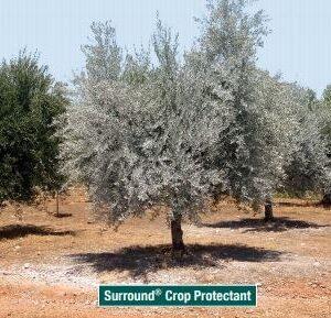 Surround® WP CROP PROTECTANT