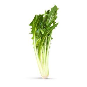 Ραδίκι Μακεδονίας – Chicory catalogna – 500 gr