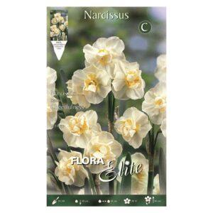 Νάρκισσος Double Cheerfulness (Αρωματικό) 310805